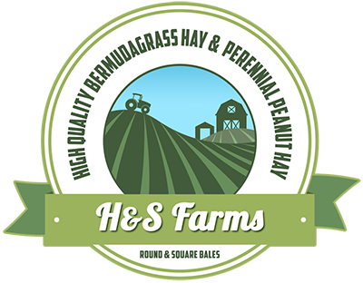 H&S Farms Premium Horse Quality Hay